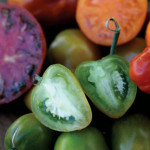 LEAD-IMAGE-Green-Tomatoes